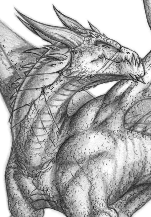 Pencil Drawings Of Dragon Heads   fashionplaceface.com