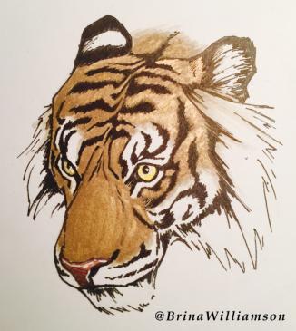 BW, gold tiger